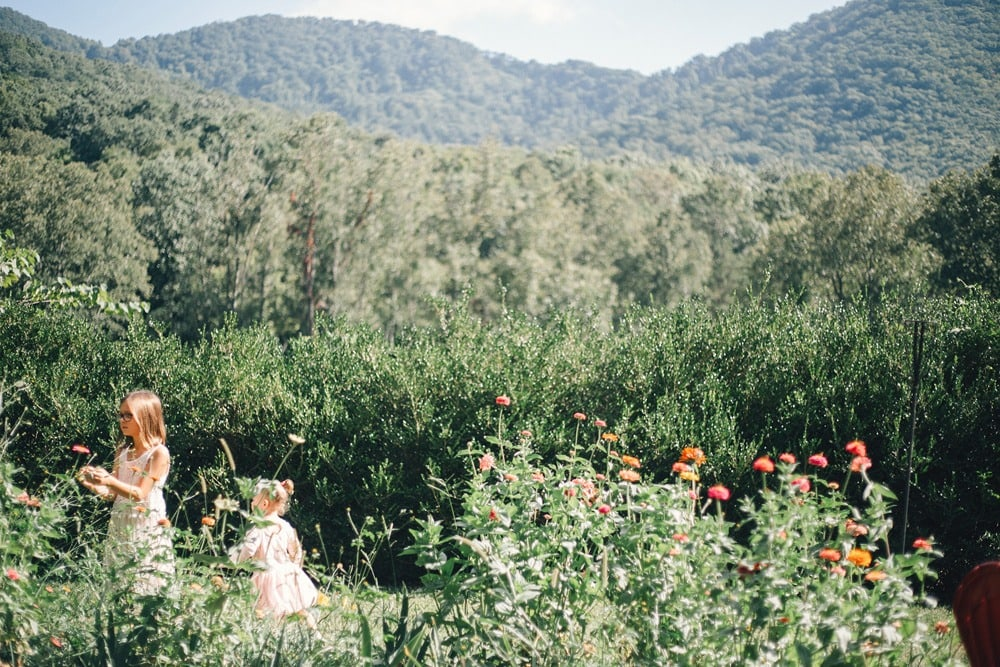 children playing in flowers near the mountains
