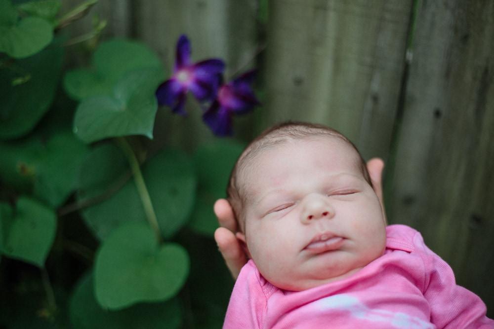 lexington newborn photographer