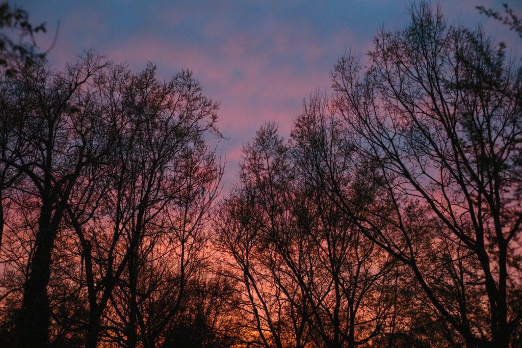 lexington sunset