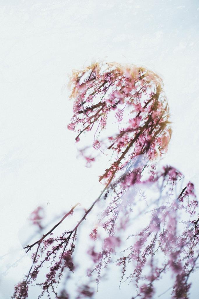 cherry blossom tree portrait double exposure