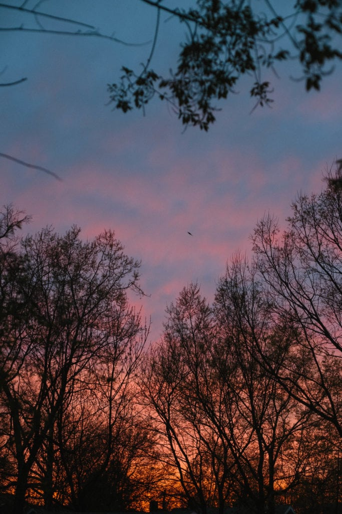 lexington kentucky pink sunset