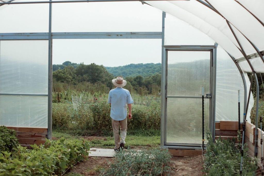 bellaire blooms flower farm greenhouse